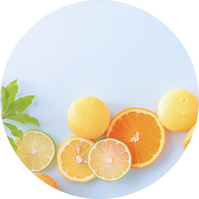 水色の背景に、オレンジやグレープフルーツなどが並んでいる写真