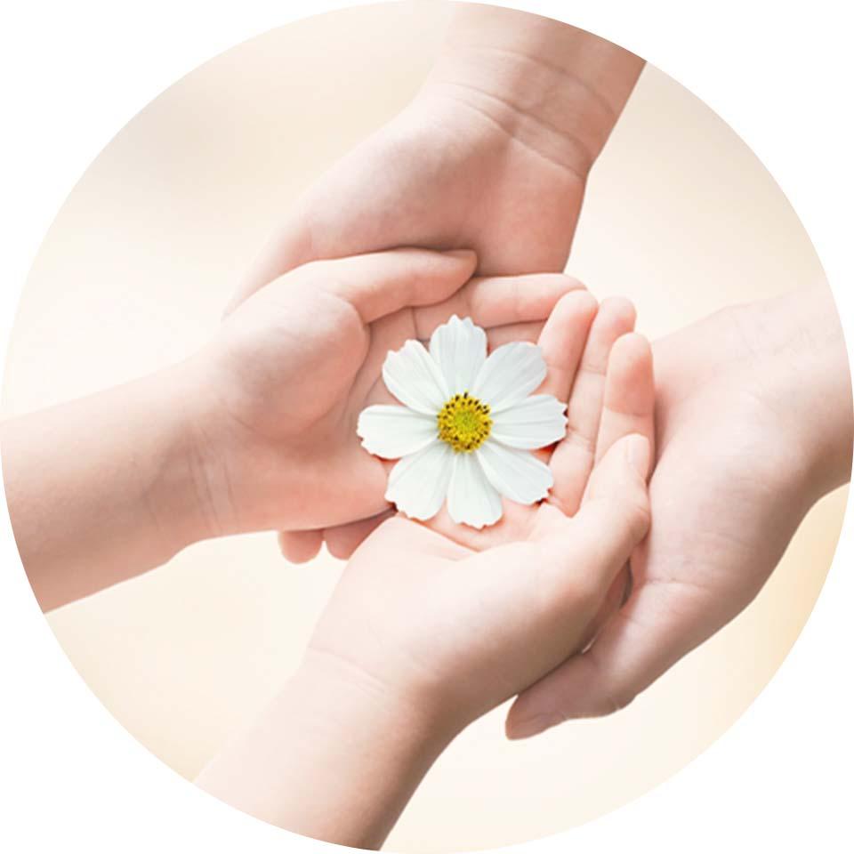花弁を包んでいるふたりの手